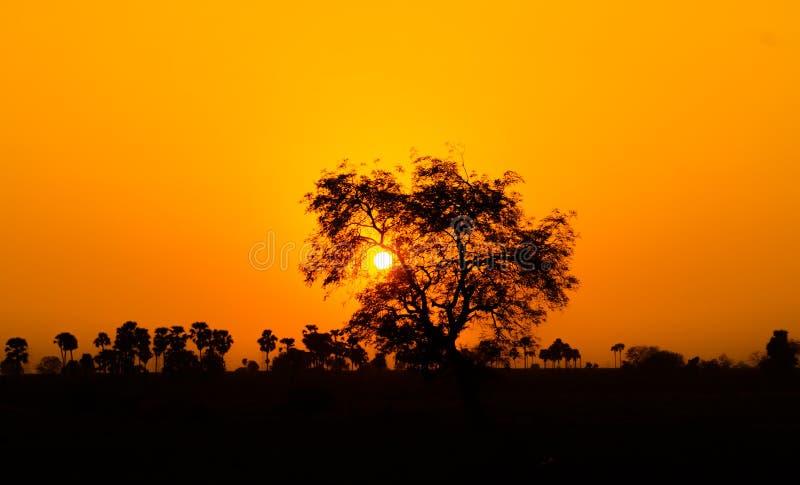Conjunto de Sun imagenes de archivo