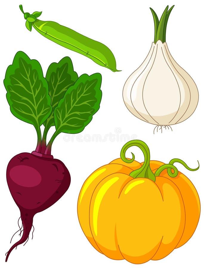 Conjunto de vegetables4 ilustración del vector