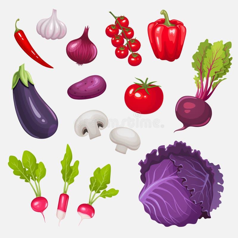 Conjunto de verduras frescas ilustración del vector