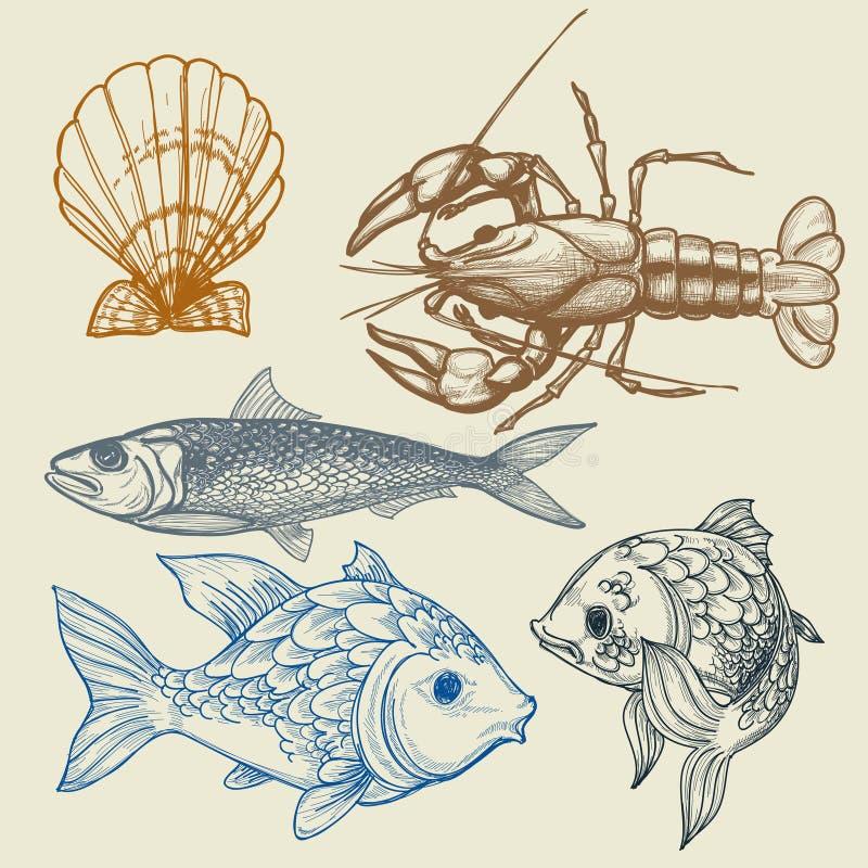 Conjunto del alimento de mar stock de ilustración