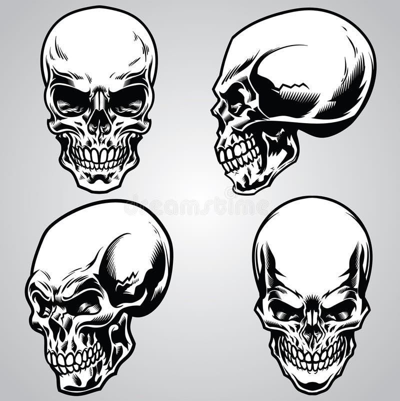 Conjunto del cráneo stock de ilustración