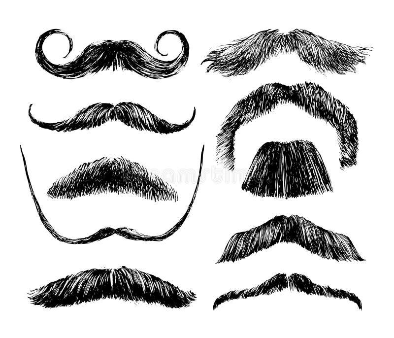 Conjunto drenado mano del bigote ilustración del vector