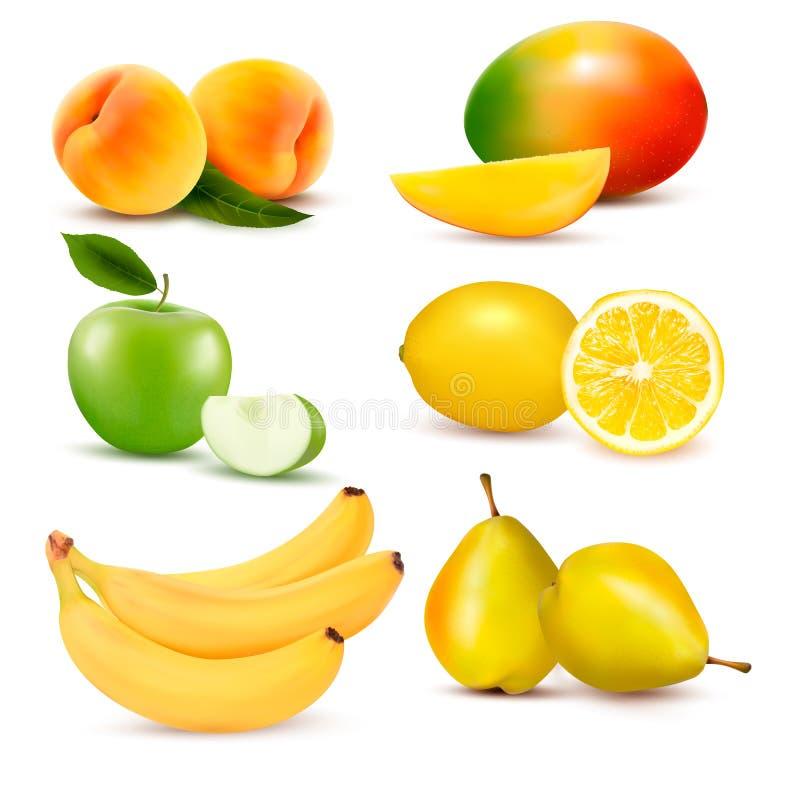 Conjunto grande de fruta fresca. Vector stock de ilustración