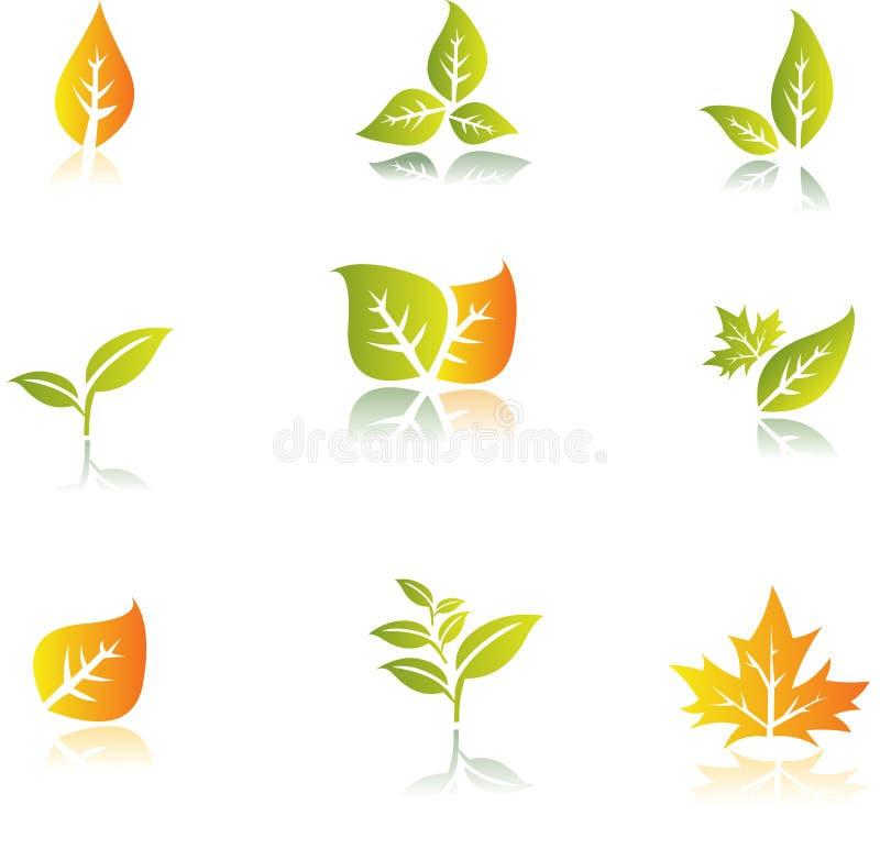 Conjunto verde de la hoja ilustración del vector