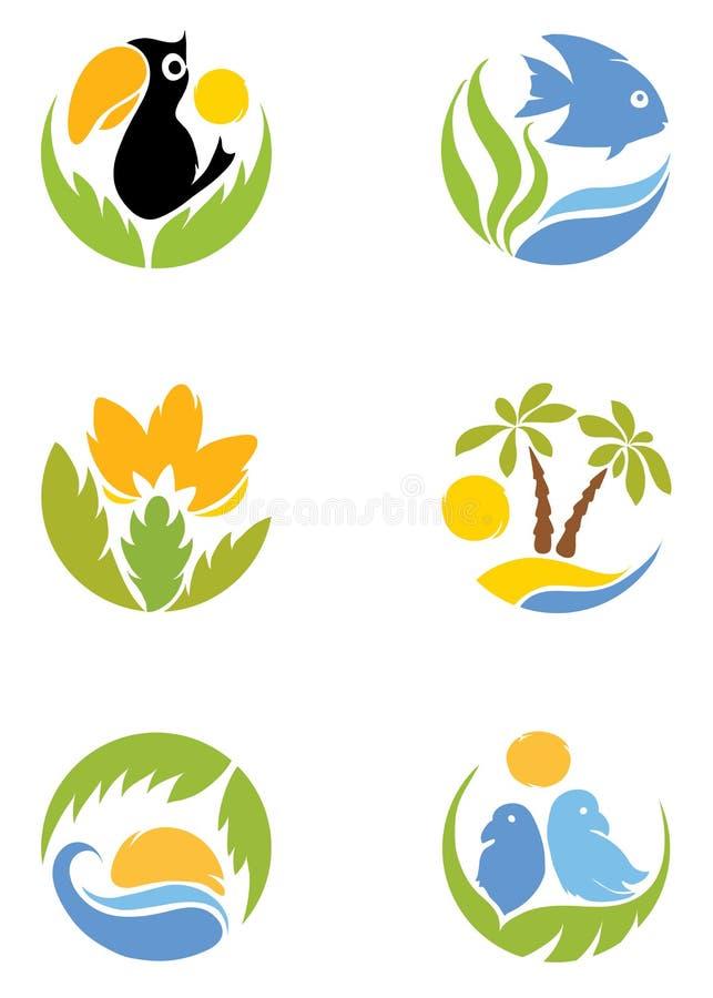 Conjunto - zonas tropicales libre illustration