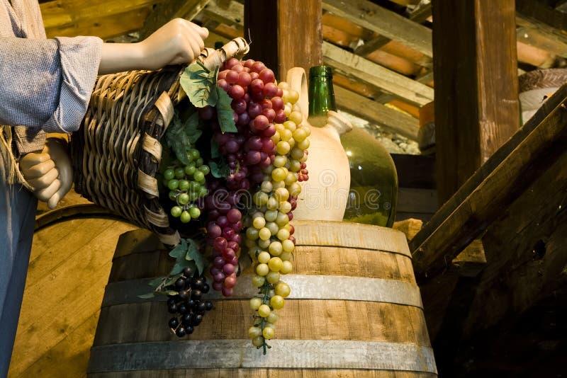 Conjuntos da uva imagem de stock