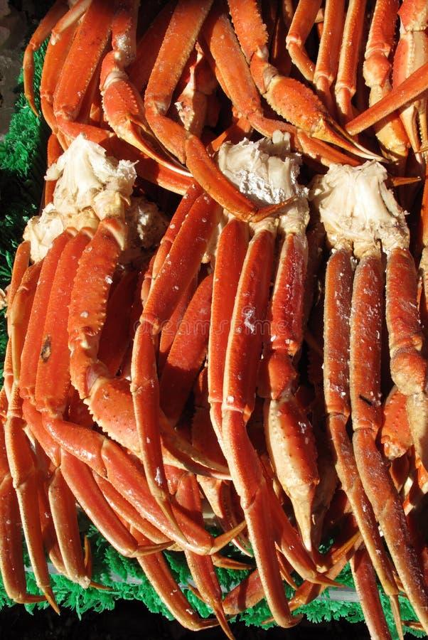 Conjuntos do caranguejo da neve imagens de stock