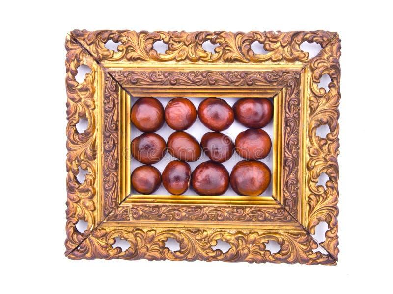 Conker bär frukt i antika utsmyckade den isolerade bildramen royaltyfria foton