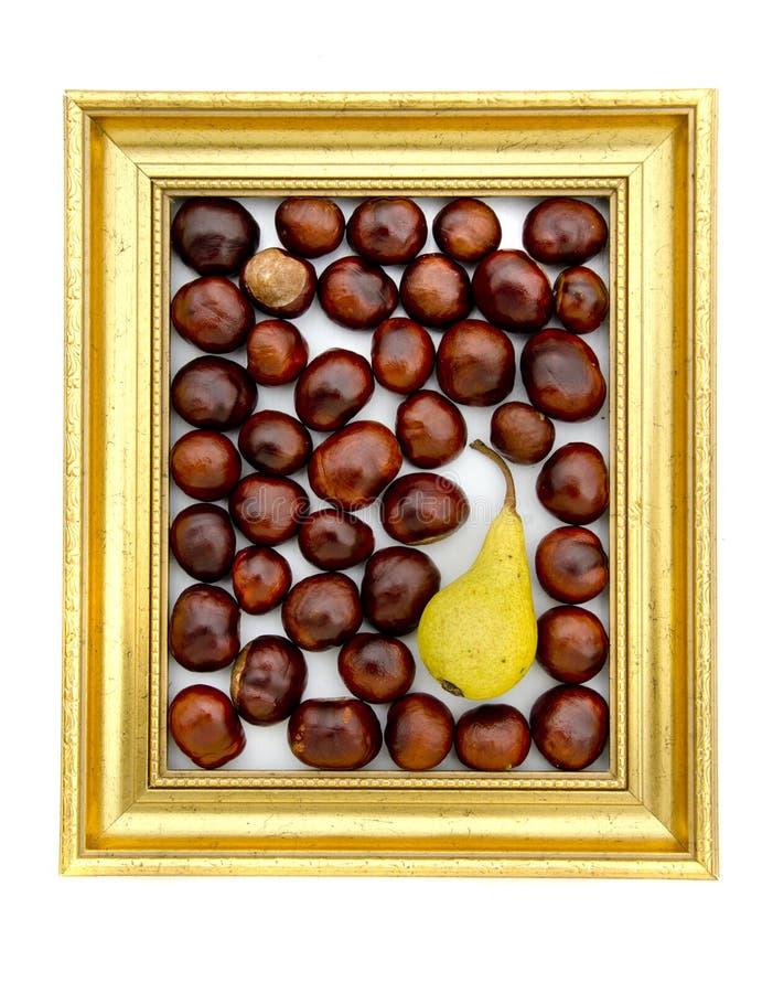 Conkerfrukter och päron in i guld- retro ram royaltyfria bilder