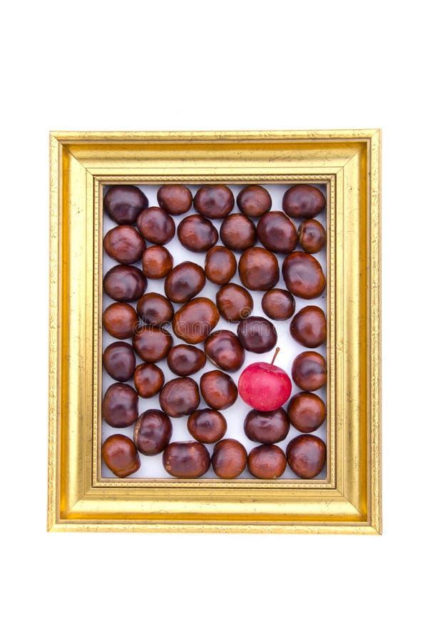 Conkerfrukter och rött äpple in i den guld- retro ramen som isoleras på vit royaltyfria foton