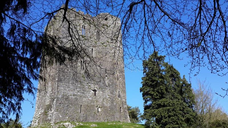 Conna城堡Conna科克郡爱尔兰 免版税图库摄影