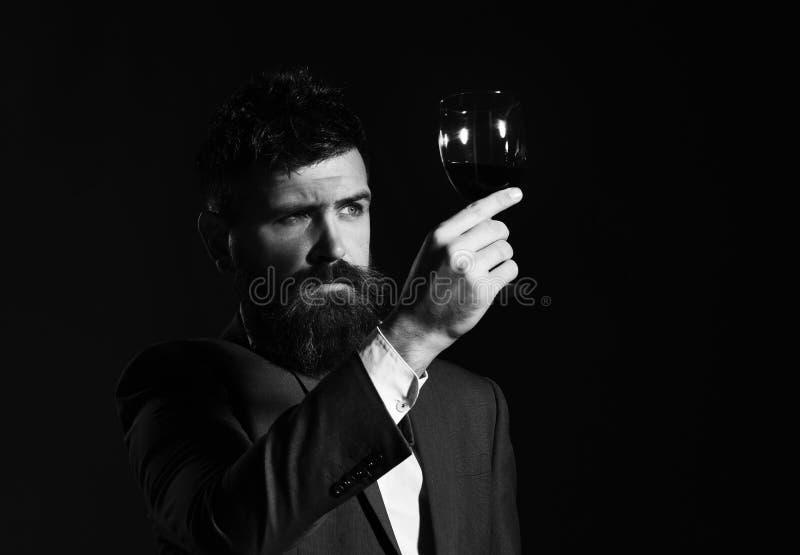 Connaisseur avec le visage sérieux goûtant le vin cher de cabernet photographie stock