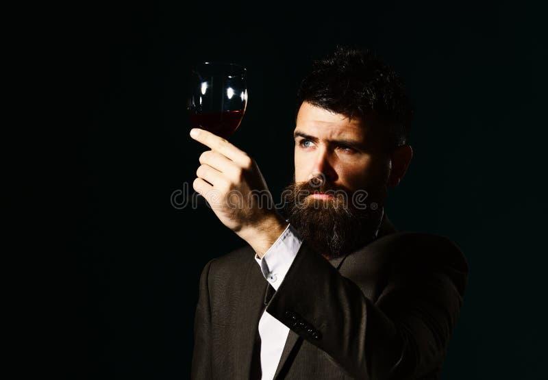 Connaisseur avec le visage sérieux goûtant le vin cher de cabernet image libre de droits