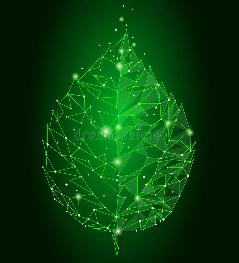 Connected dots point line triangle leaf. Eco nature concept on green background lights geometric poligonal low poly icon. Template vector illustration art royalty free illustration