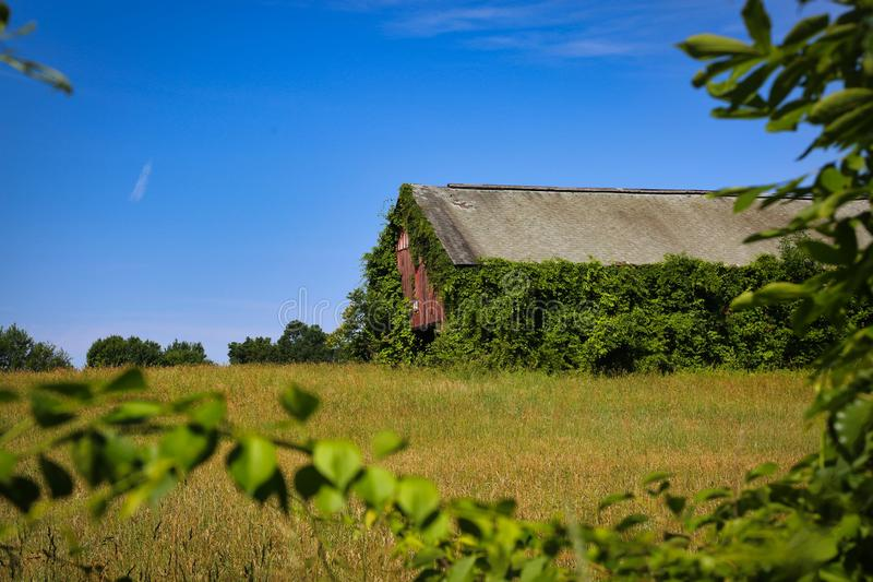 Tobacco Farm Barn Windsor Connecticut. Connecticut farm with tobacco barn in fields of royalty free stock photography