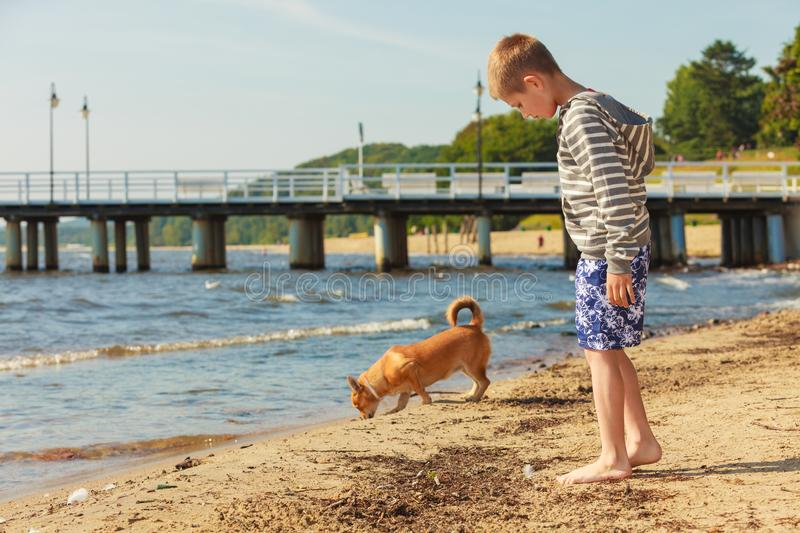 Boy playing with his dog. Connection between animals and kids concept. Sportive mixed race dog and boy kid playing together. Active child with puppy having fun stock images