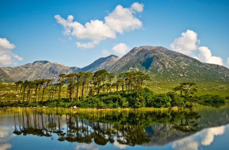 Connemara的湖,爱尔兰 库存图片