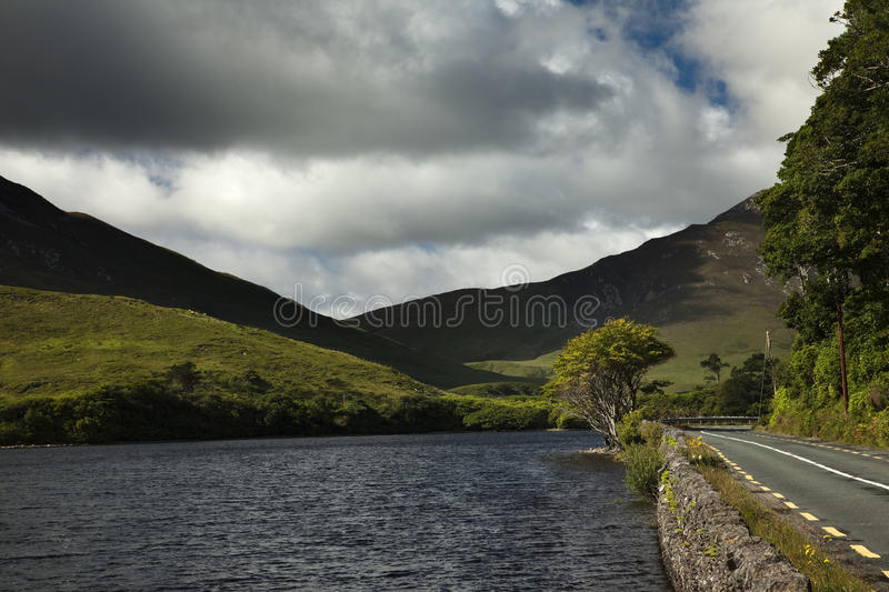 Download Connemara National Park stock photo. Image of environment - 17170236