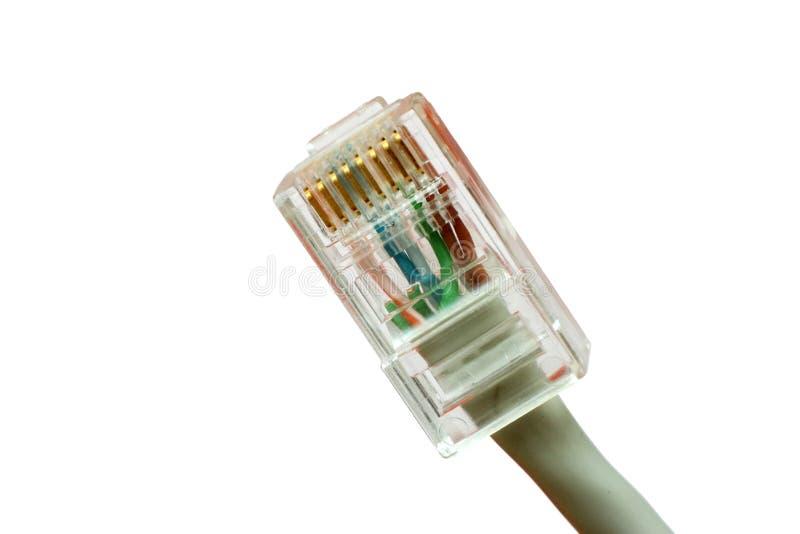 Connettore della rete - isolato immagine stock libera da diritti