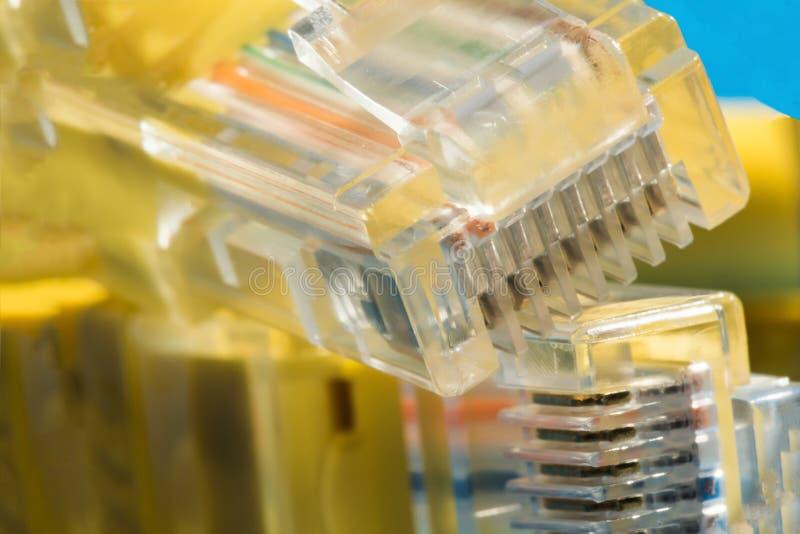 Connettore di plastica per collegamento ad una rete di computer, macro fondo immagine stock