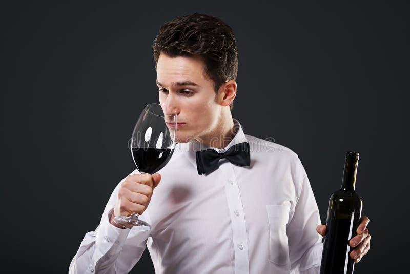 Connoisseur av wine arkivbilder