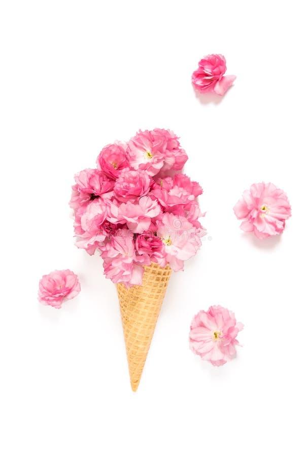 Cono de la galleta del helado del flor del cerezo de las flores de la primavera imagen de archivo