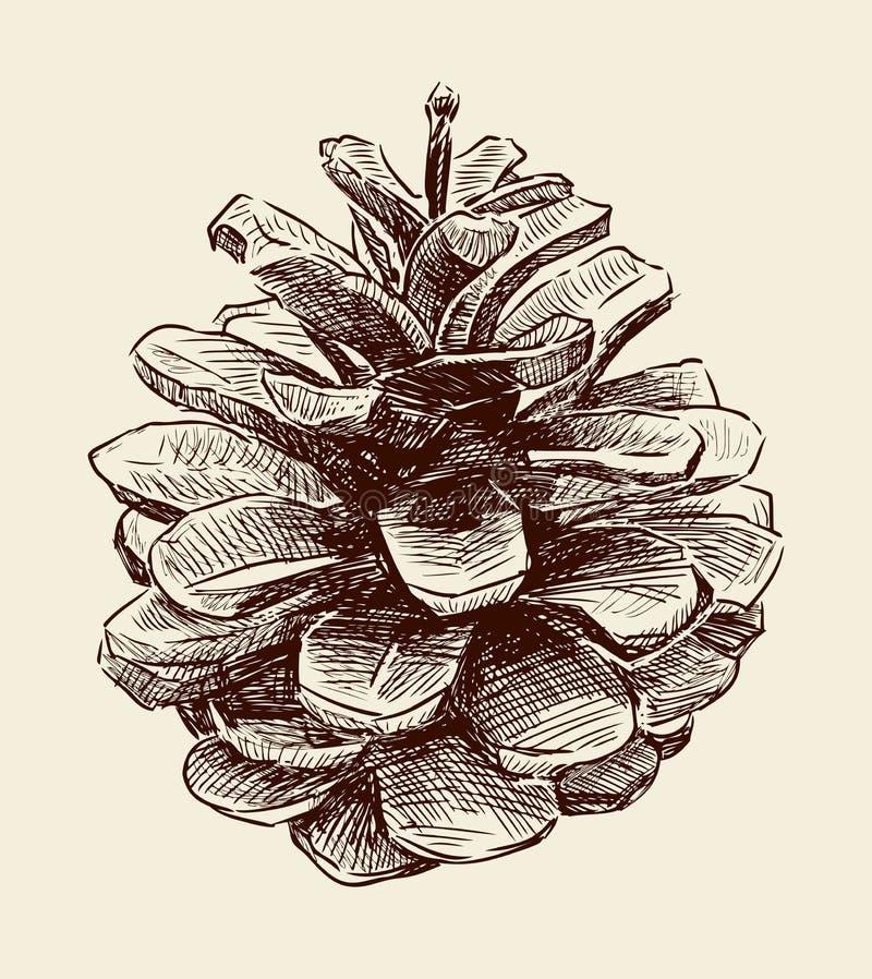Cono del pino stock de ilustración