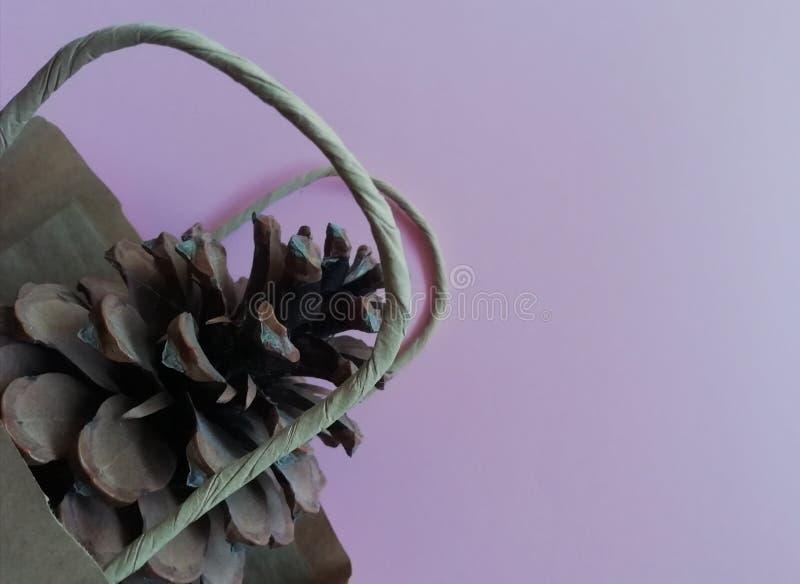 Cono del pino en bolso del eco en fondo del pinc imagenes de archivo