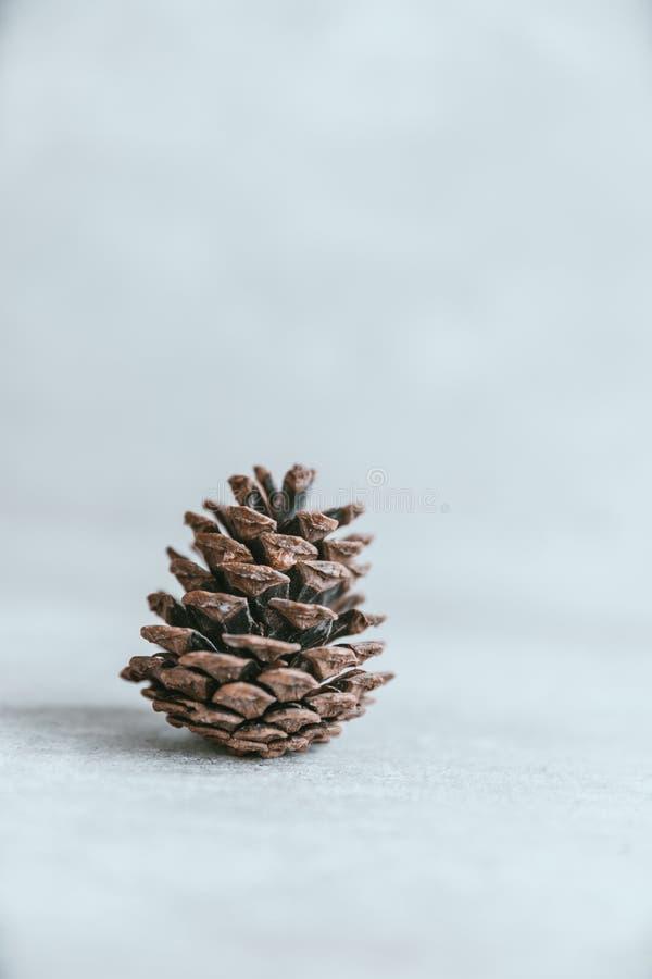 Cono del pino en la tabla de madera blanca rústica, backg de la decoración de la Navidad fotografía de archivo libre de regalías
