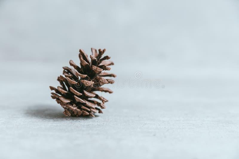 Cono del pino en la tabla de madera blanca rústica, backg de la decoración de la Navidad foto de archivo libre de regalías