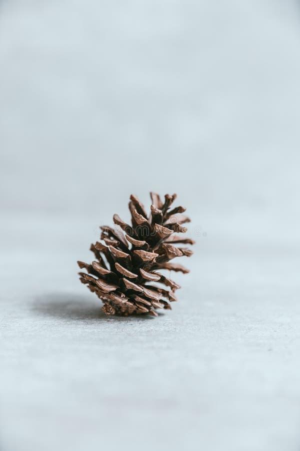 Cono del pino en la tabla de madera blanca rústica, backg de la decoración de la Navidad fotos de archivo