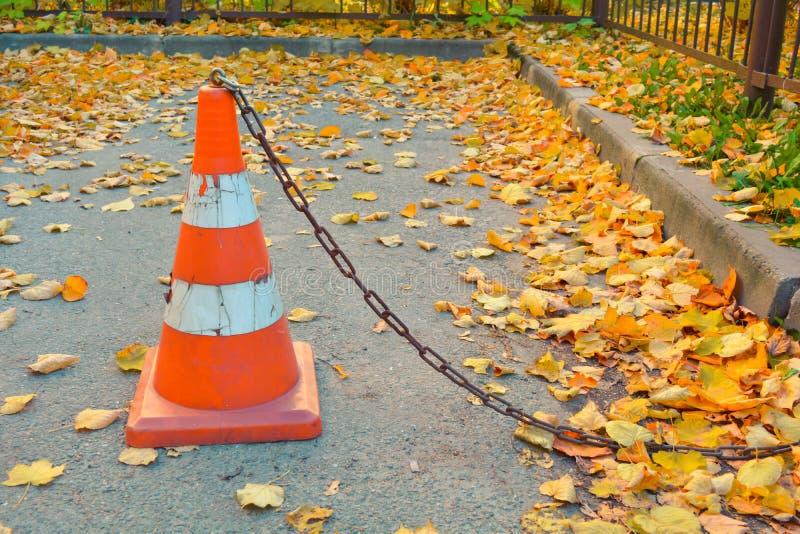 Cono di traffico, foglie di autunno cadute asciutte sull'asfalto concreto immagini stock