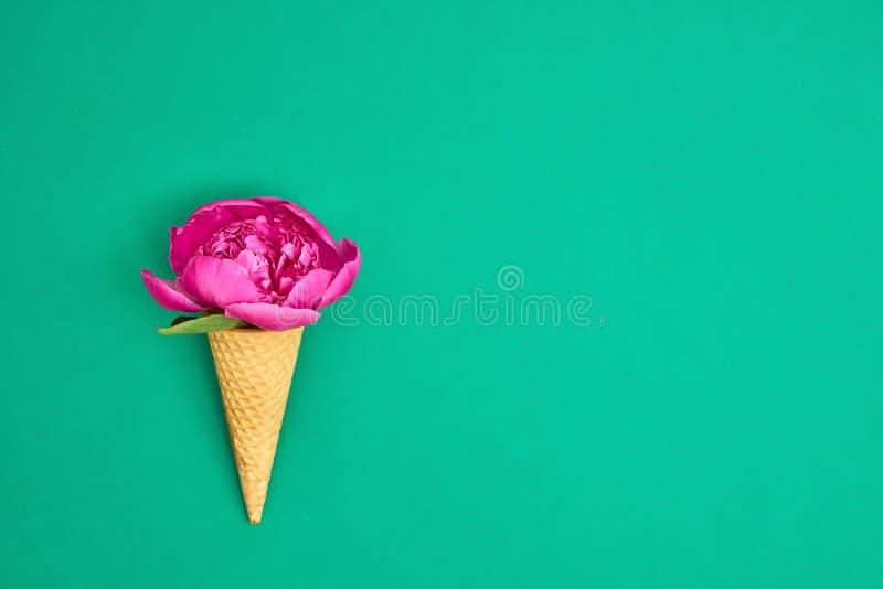 Cono gelato con il fiore rosa della peonia sopra fondo verde somma immagine stock libera da diritti