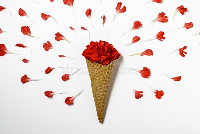Cono gelato con il fiore rosso dei garofani Concetto minimo di estate fotografia stock libera da diritti