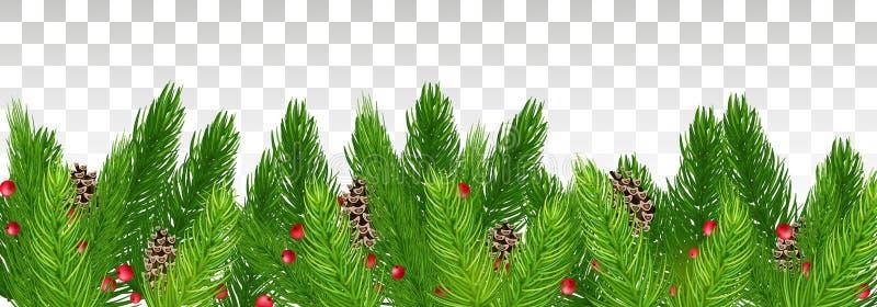 Conos del pino en las ramas de un árbol de navidad y de bayas rojas libre illustration