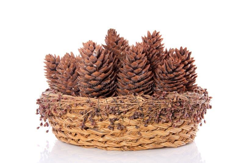 Conos del pino en una cesta imagenes de archivo