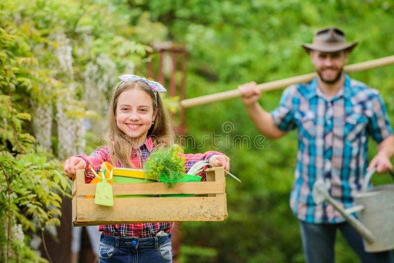 Conosce tutto circa i fiori paese del villaggio della molla Padre e figlia sul ranch Bambina e pap? felice dell'uomo immagini stock libere da diritti