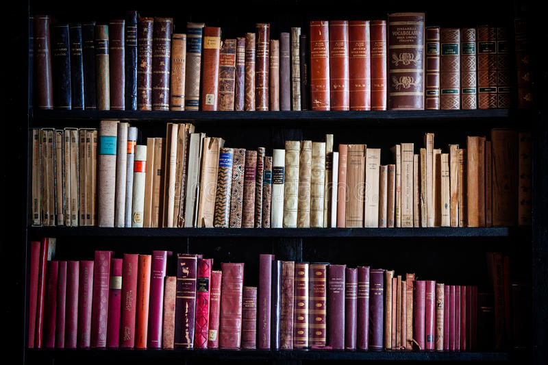 Conoscenza d'annata antica delle biblioteche Scaffali dei libri storici fotografia stock