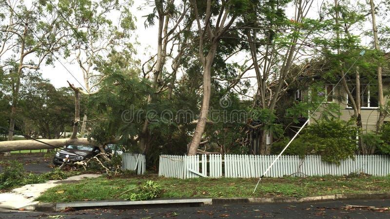 Conséquence d'un ouragan ou d'une tempête photographie stock libre de droits