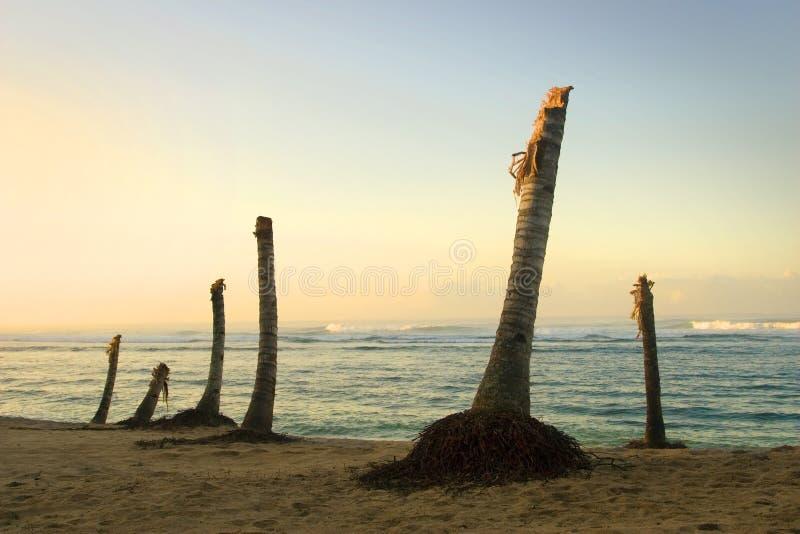 Conséquence de tsunami photos stock