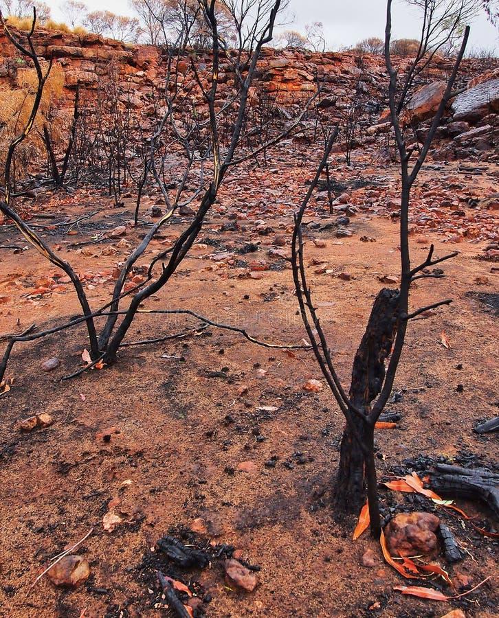 Conséquence du feu de brousse ; Centre de rouge du ` s d'Australie photo stock