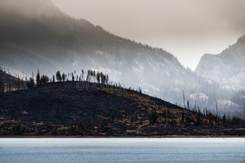 Conséquence Jackson Lake Grand Teton du feu de forêt photo stock