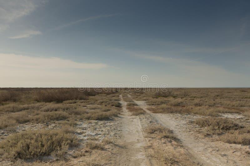 Cons?quences de catastrophe de mer d'Aral D?sert de sel de Sandy sur l'endroit de l'ancien fond de la mer d'Aral photos stock