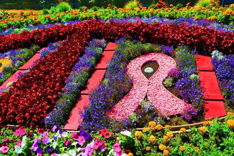 Conscientização do câncer imagens de stock