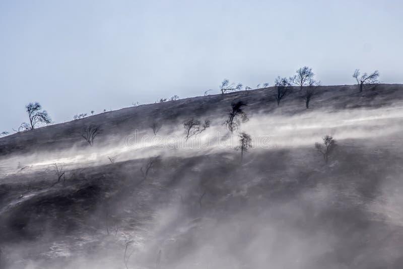 Consecuencias del incendio fuera de control con la ladera y Ash Blowing quemados en viento fotos de archivo libres de regalías