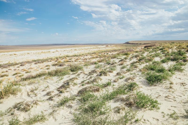 Conseguenze della catastrofe del mare di Aral Deserto sabbioso del sale sul posto di precedente fondo del mare di Aral fotografie stock