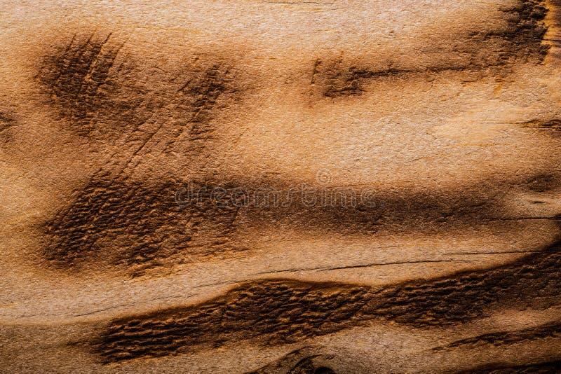 Conseil en bois superficiel par les agents approximatif Texture rustique pour le fond tonne photographie stock libre de droits