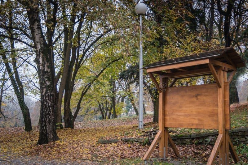 Conseil instructif fait de bois en parc image stock
