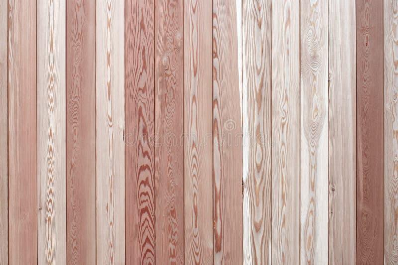 Conseils en bois texturisés avec de beaux modèles d'anneaux annuels photo libre de droits