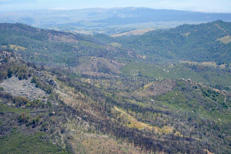 Consequências do fogo da rocha da chaminé - costa central Califórnia foto de stock